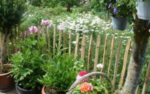trädgårdsstövlar